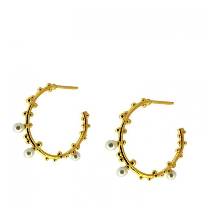 PENDIENTES BARY GOLD